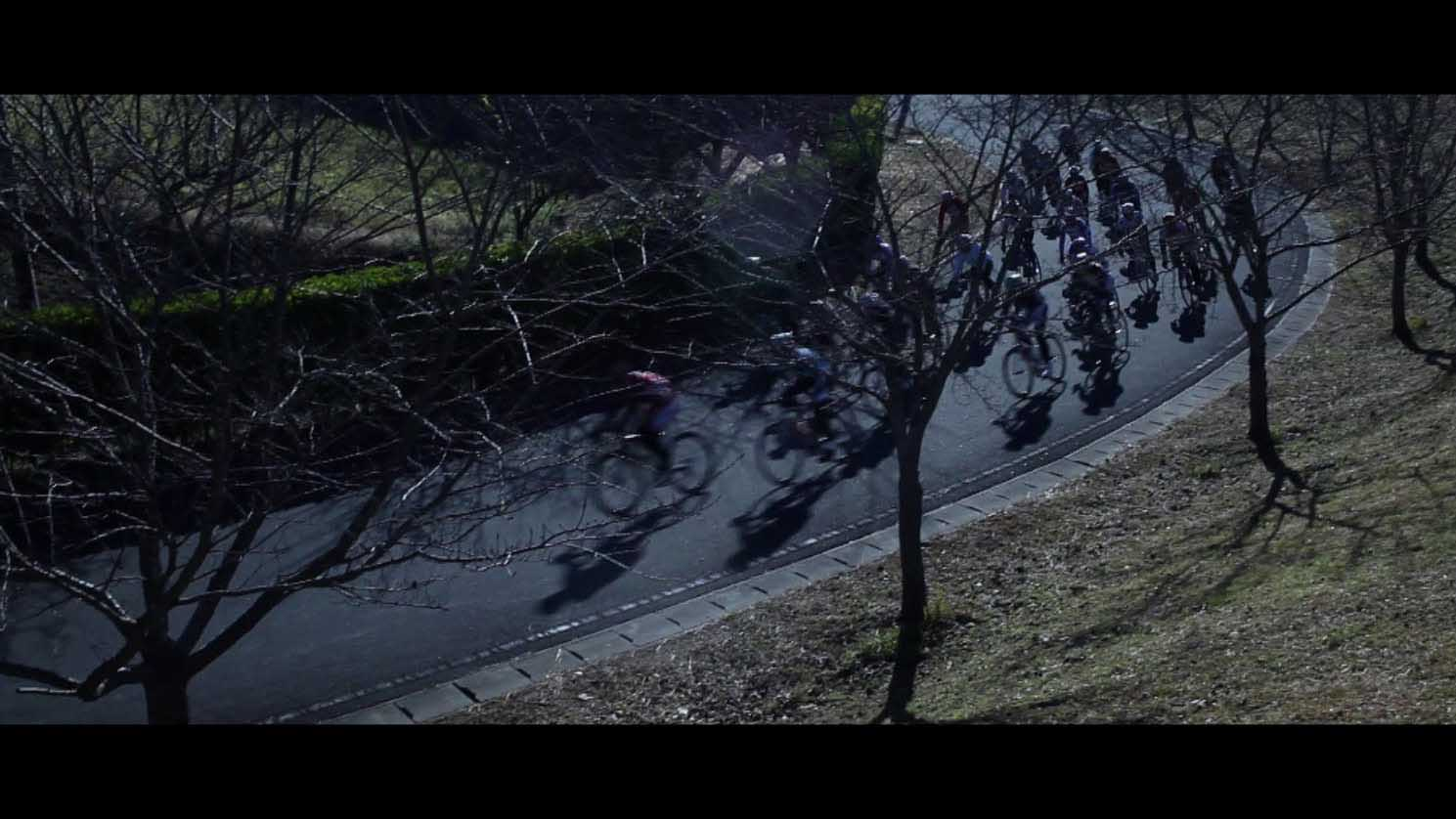 SEO Cycle Festival